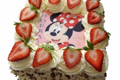 Minnie-Mouse (15x15 cm)
