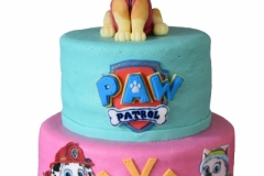 Paw Patrol (15+20 cm, extra hoog)